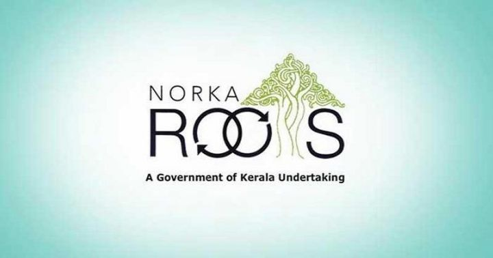 norka-roots.jpg